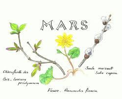 """Résultat de recherche d'images pour """"mois de MARS"""""""