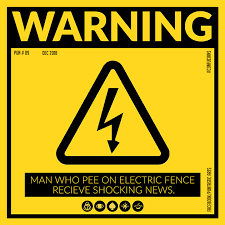 Man Who Pee On Electric Fence Recieve Shocking News Puntastic Art Is A Collection Square Typographic Posters Also Call Typographic Poster Puns Confucian