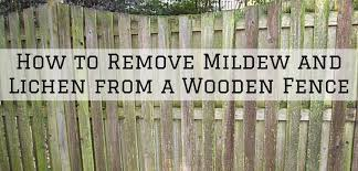 How To Remove Mildew And Lichen From A Wooden Fence Aspen Painting Wallcovering