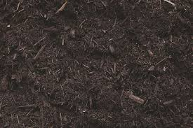 View Termites In Mulch Bag Gif