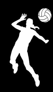Hitter Volleyball Window Decal Orlando Volley Shop
