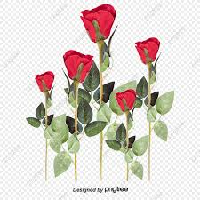 اطارات زهور وورود