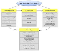 the four dimensions of food security