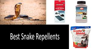 How To Keep Snakes Away Best Snake Repellents Review 2020