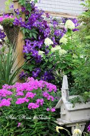 white transferware tea and garden