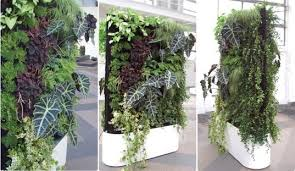 greenworks self watering living wall system