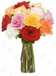 مادة خلفية تصميم زجاجة وردة جميلة الجمال الورد المزهريات Png