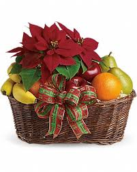 fruit and poinsettia basket in new york