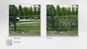 Compass Home Set Of 2 Expandable Faux Ivy Privacy Fences Qvc Com