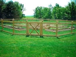 Cheap Garden Fence Ideas Kayleeinterior Co