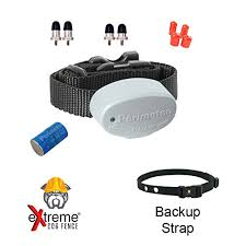 Invisible Fence R21 Compatible Dog Fence Collar For Replacement Or Addition To Existing Invisible Fence Brand Dog Fence System With Backup Collar Strap Bundle