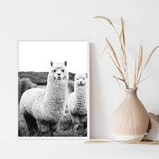 Alpaca Black White Animal Poster Boho Wall Art Llama Print Nursery Canvas Painting Nordic Decoration Picture Modern Home Decor Wallcorners Art Canvas