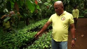 filipino farmer strikes gold with cocoa