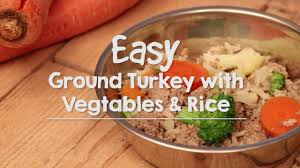 homemade dog food for allergies turkey