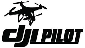 Dji Pilot Drone Vinyl Decal Sticker For Vehicle Car Truck Window Bumper Wall Decor 8 Inch 20 Cm Wide Gloss White Vinyl Decal Stickers Vinyl Decals Drone