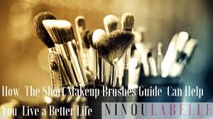 how the short makeup brushes guide can