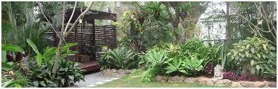 tropical garden designs brisbane pdf