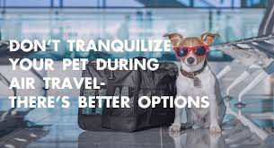 tranquilize your pet during air travel