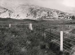 Concrete And Steel Fence Farm Fencing Te Ara Encyclopedia Of New Zealand
