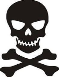 Skull N Crossbones Jolly Roger Car Truck Vinyl Decal Window Sticker Pv111 Pirate Vinyl Decals