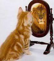 Por qué nos vemos diferentes en el espejo y en las fotos ...
