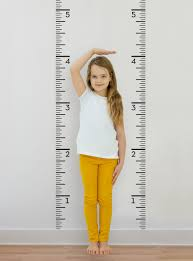 Growth Chart Ruler Decal Children S Vinyl Wall Decal Simple Shapes