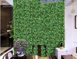 Wall Climbing Vine Nz Buy New Wall Climbing Vine Online From Best Sellers Dhgate New Zealand