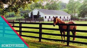 30 Horse Fence Ideas That Are Easy To Make Youtube