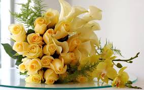 yellow rose background on wallpaperget com