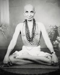 krishnamacharya quotes yoga centre for yoga studies