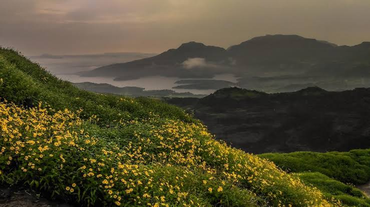 Image result for ratangad in monsoon HD images""