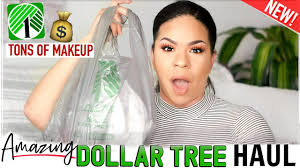 dollar tree haul 2019 must see makeup