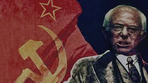 Image result for bernie socialism