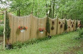 Pin On Yard Ideas