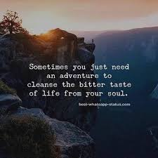 nature quotes perfect natural beauty captions capture now