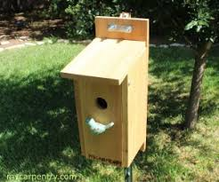 Bluebird Birdhouse Plans Complete Step By Step Instructions For Building A Bluebird Bird House