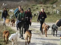 Cani. Socializzarsi in natura: intervista a Veronica Papa - L ...