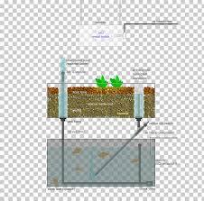 hydroponics farm garden greenhouse