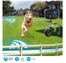1 Dogs Underground Electric Dog Pet Fencing System In Ground Electric Dog Fence Shock Collar Dog Training Trainer Collar Training Collars Aliexpress