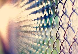 Fences Bokeh Sunlight Chain Link Fence High Quality Wallpapers High Definition Wallpapers