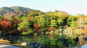traditional japanese gardens in kyoto