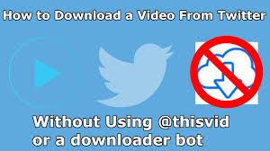 How To Download A Video On Twitter ...