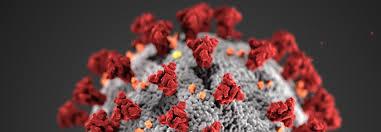 COVID-19 (Coronavirus) Information - The University of Tennessee ...
