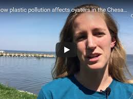 Christine Knauss | University of Maryland Center for Environmental Science