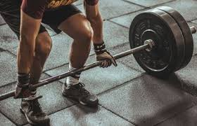 software for sports fitness and