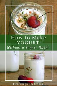 make yogurt without a yogurt maker