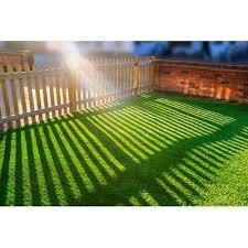 pet zen garden 612409799593 premium
