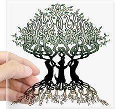 Amazon Com Cafepress Ferret Tree Of Life 2 Square Sticker 3 X 3 Square Bumper Sticker Car Decal 3 X3 Small Or 5 X5 Large Home Kitchen