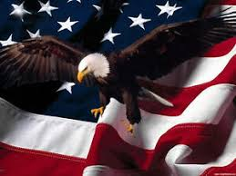 American Flag Soaring Bald Eagle Mural 2 Rv Trailer Wall Decal Decals Graphics Ebay