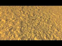 subterranean termite pinholes you